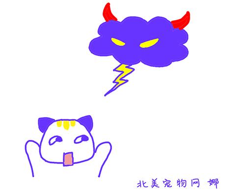 行为击破机——雷声和噪音畏惧症