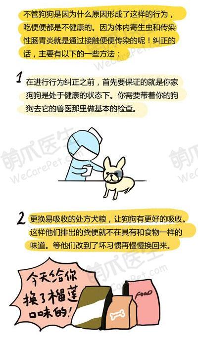 漫画   有屎以来的故事3:狗狗吃便便怎么办?