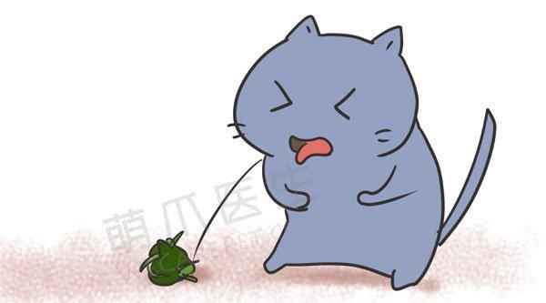 猫咪为什么要吃草?