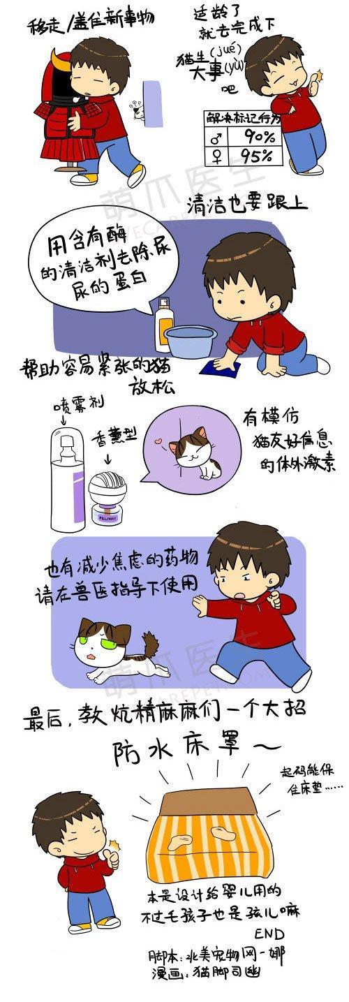 《新手大学堂系列》之喵星人--猫咪尿床怎么破?