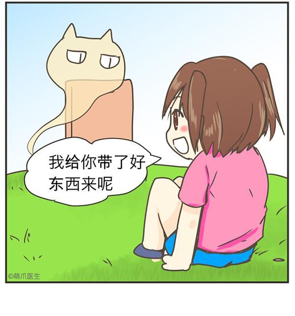 宠物通灵师 | 第二章:挂念