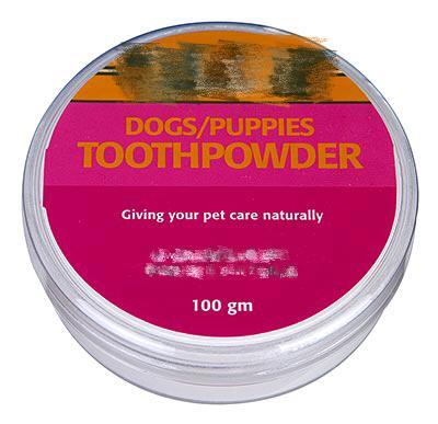 想给宠物刷牙?先来看看装备大解析!