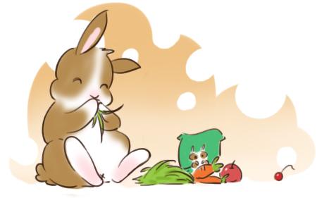 怎么喂兔子?——兔子的食物配比
