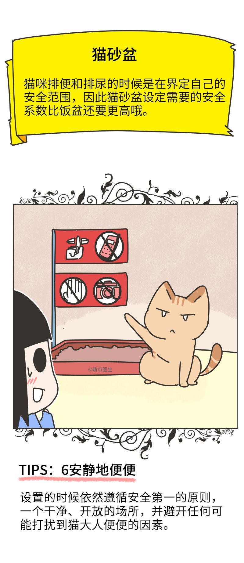 挠~挠~挠~猫咪又在家里毁天灭地了,怎么办呢?
