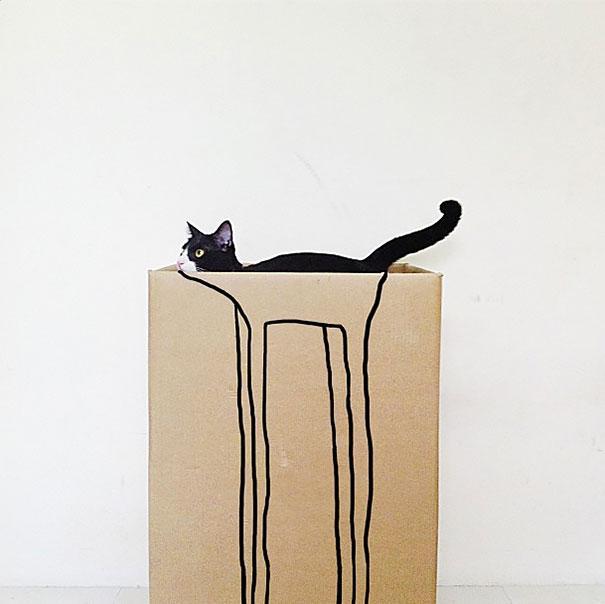 让你微微一笑的猫咪照片,简直太巧了!